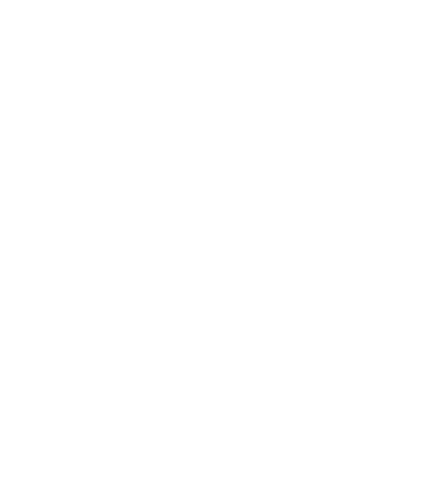 vp_vision-logo-simple-white-01_lo